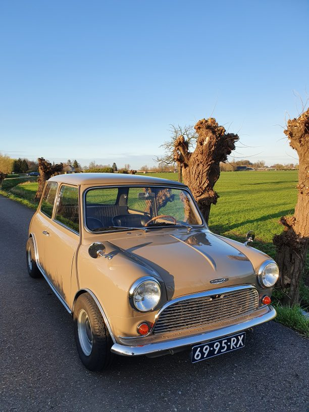 Mini 1000 Sandy Beige restored